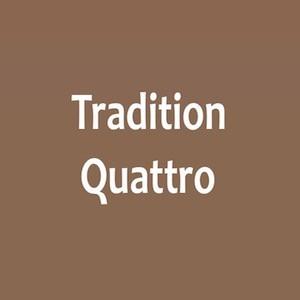 Categoría de Balterio Tradition Quattro